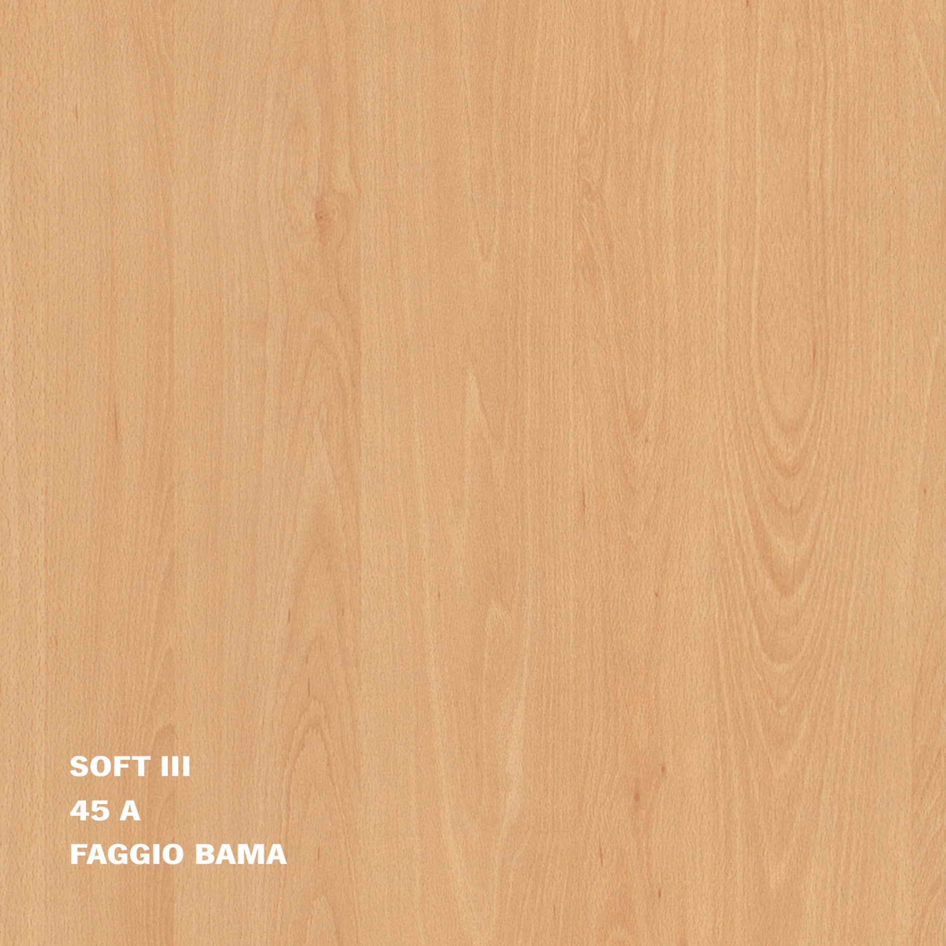 45A_FAGGIO_SOFT III